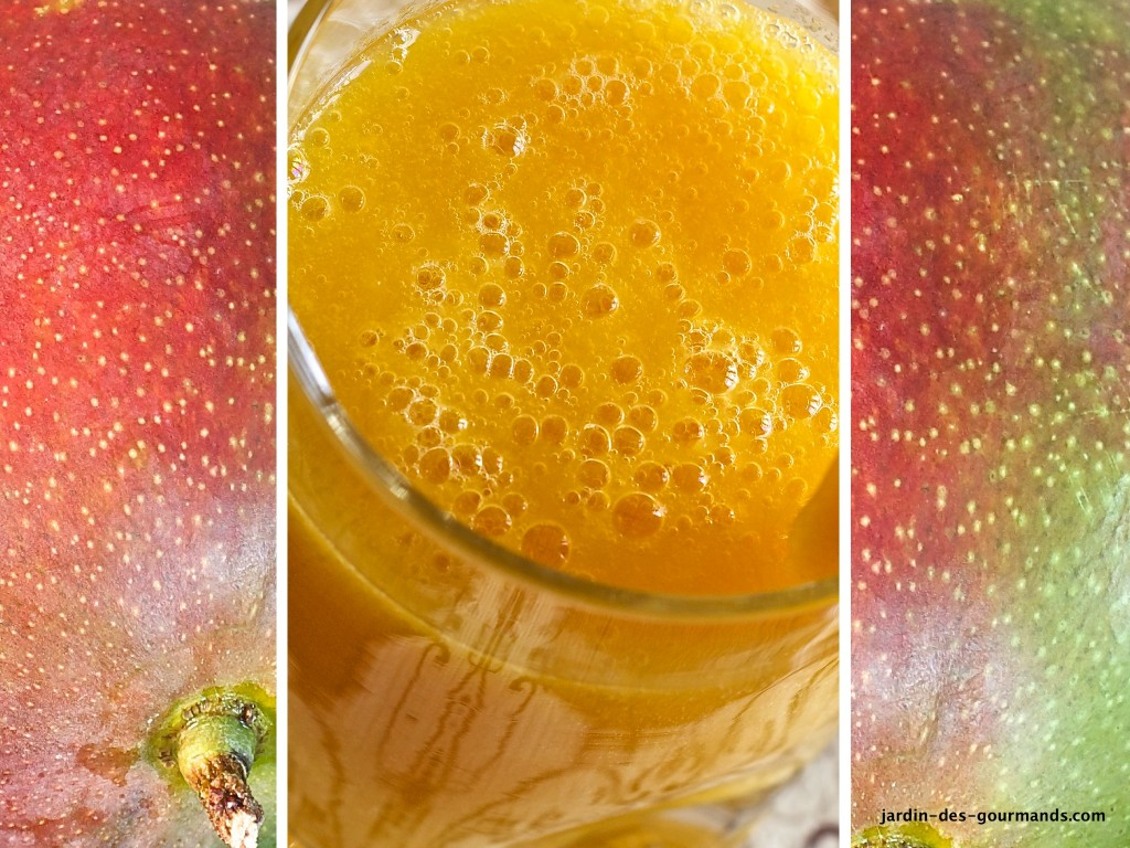 SMOOTHIE MANGUE AGRUMES S1_0