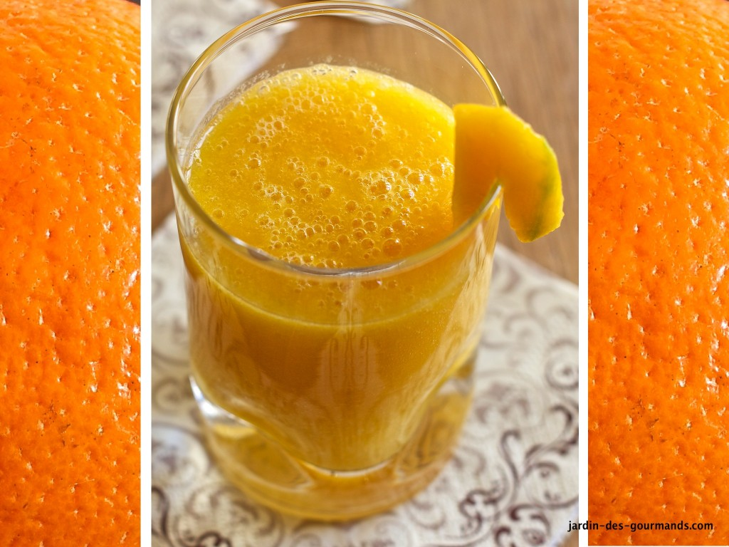SMOOTHIE MANGUE AGRUMES S2_0