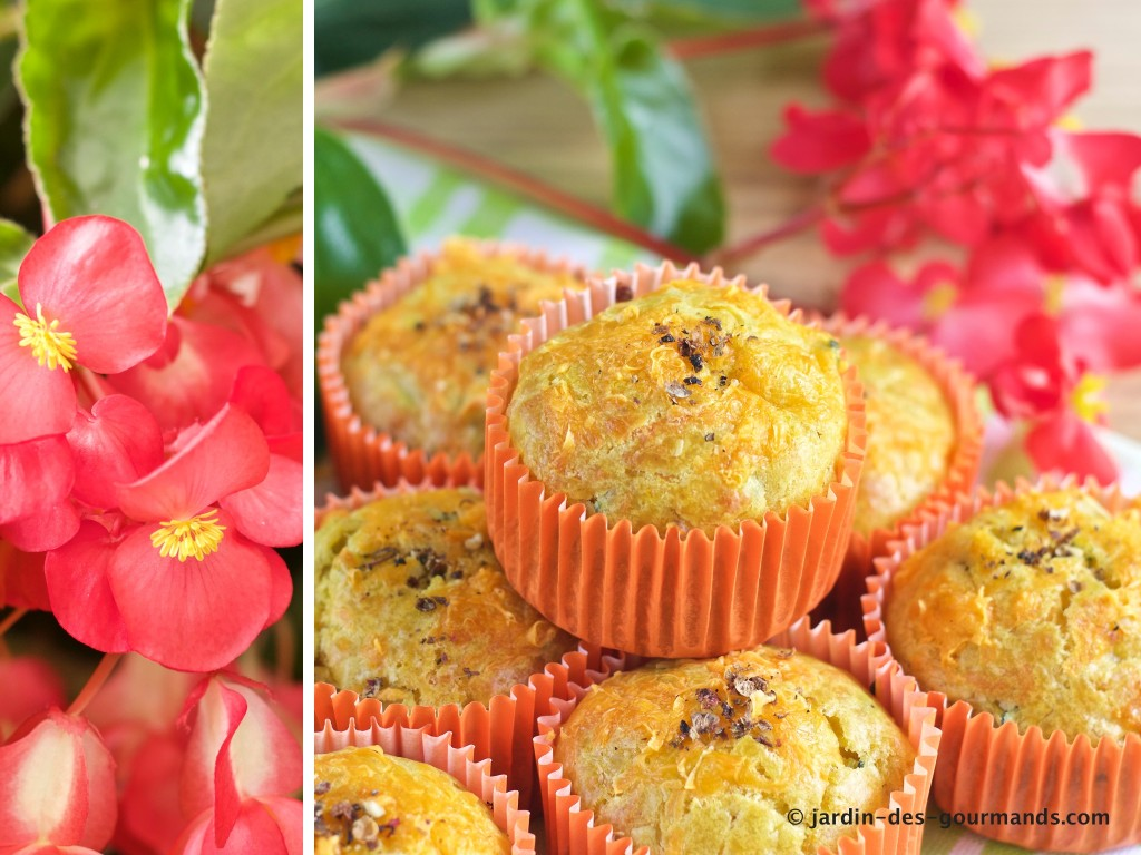 Muffins courgettes, curry, mimolette 4