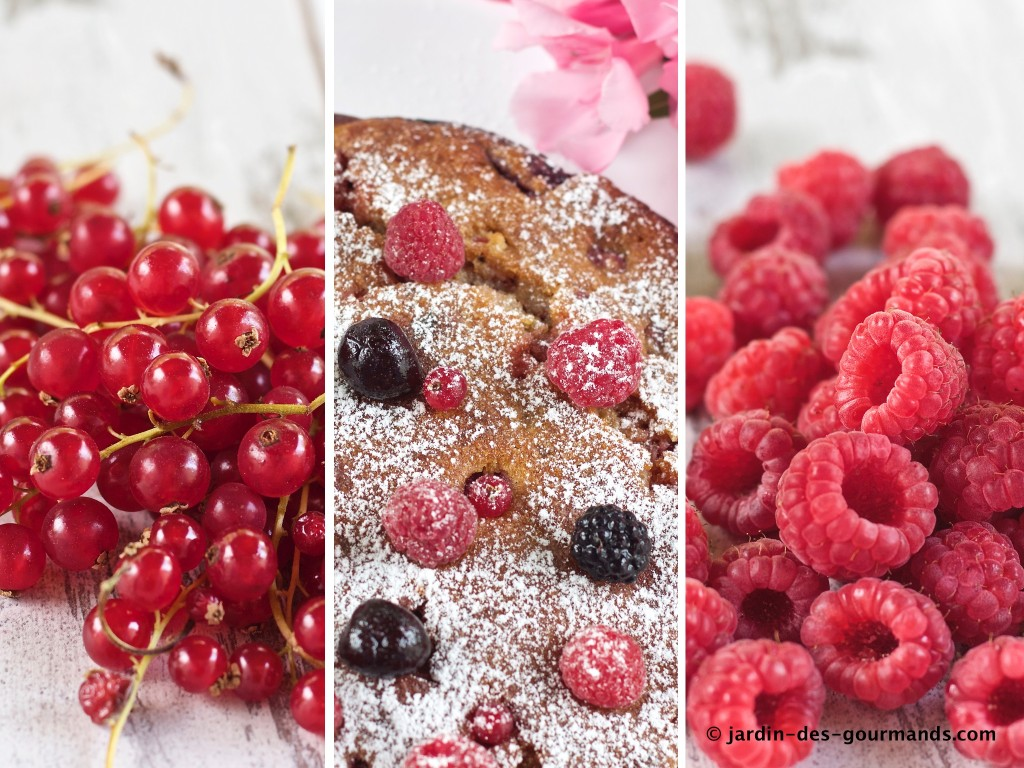 irresistible-aux-fruits-rouges2