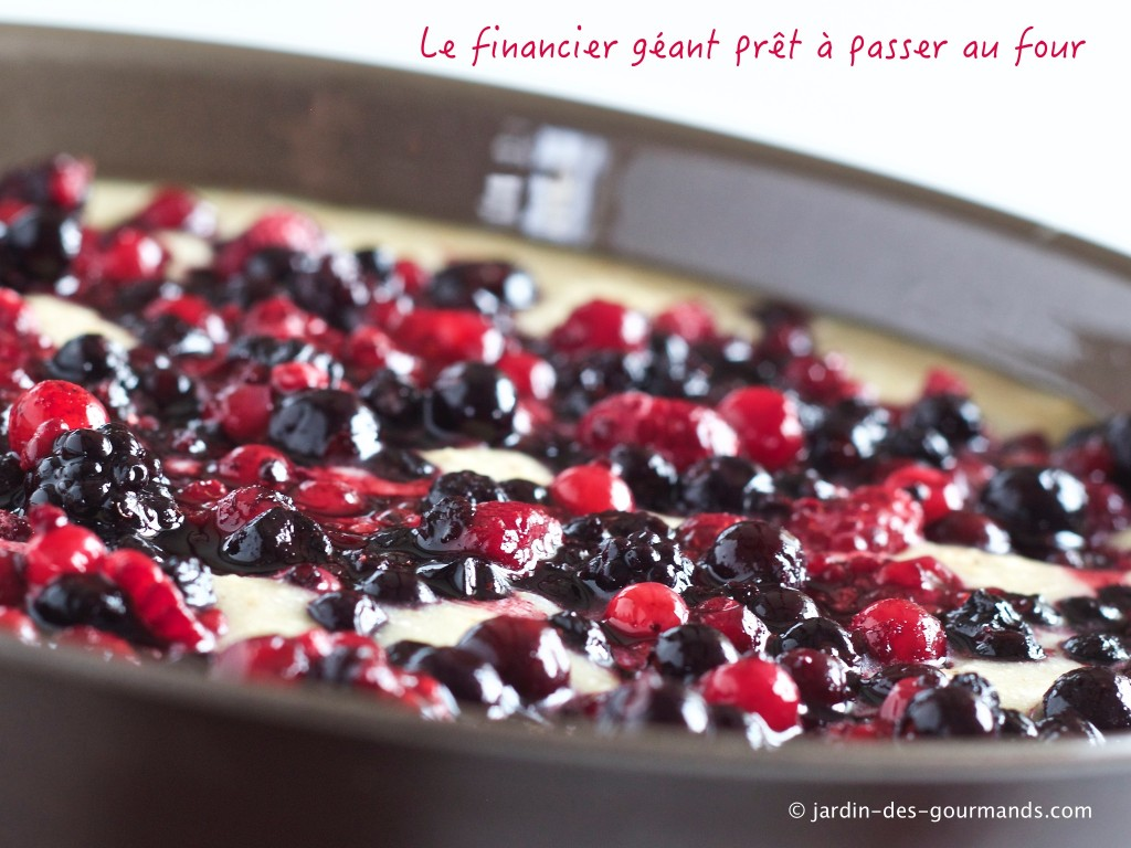 financier-geant-jdg1