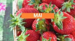 Les produits de MAI