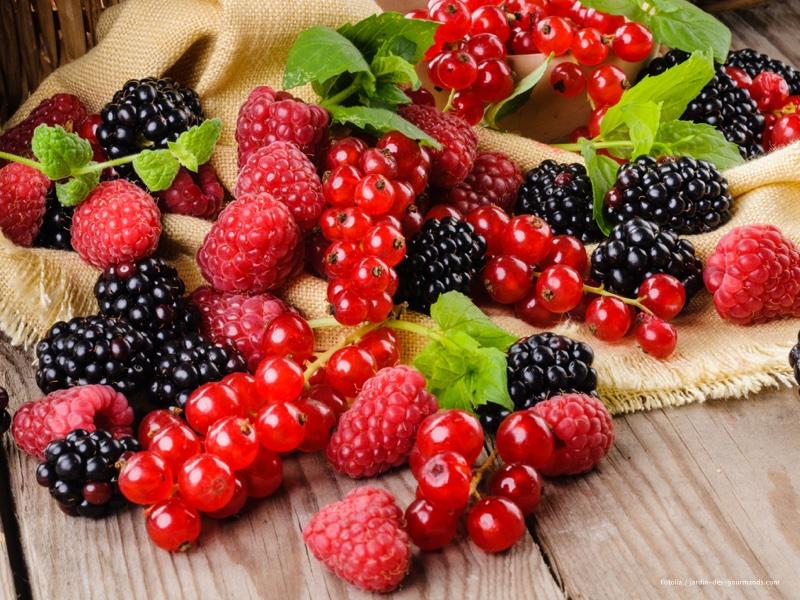 1-fruits-rouges-jdg