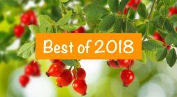 Best of 2018 sucré-salé